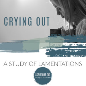 Crying Out: 20 Days in Lamentations